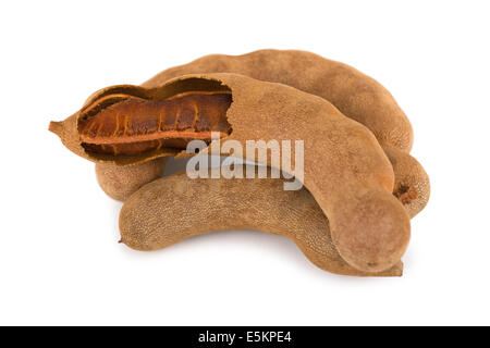 Tamarind - Stock Photo