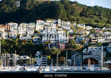 Houses on hillside above boat harbour, Mount Victoria, Wellington, North Island, New Zealand - Stock Photo