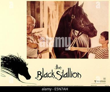 THE BLACK STALLION, Mickey Rooney, Kelly Reno, 1979. (c) MGM/ Courtesy: Everett Collection. - Stock Photo