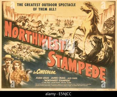 Northwest Stampede Stock Photo Royalty Free Image