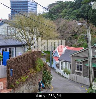 Ascot Street Wellington steep hill residential area of wellington new zealand - Stock Photo