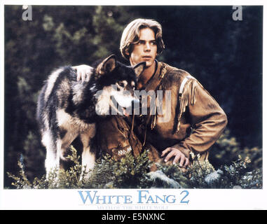 WHITE FANG 2: MYTH OF THE WHITE WOLF, US lobbycard, Scott Bairstow, 1994, © Buena Vista/courtesy Everett Collection - Stock Photo