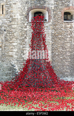 London, UK. 4th Aug, 2014. Blood Swept Lands and seas of red by Paul Cummins. Last minute preparations before the - Stock Photo