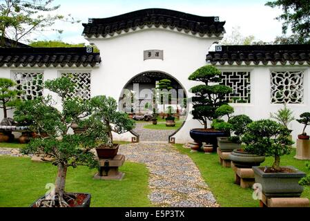 SINGAPORE:  A moongate pierces a wall at the Bonsai Gardens in the Chinese Garden - Stock Photo