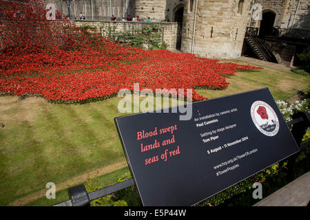 London, UK. 4th Aug, 2014. Marking the centenary of the the beginning of the First World War (WW1) in 1914, ceramic - Stock Photo