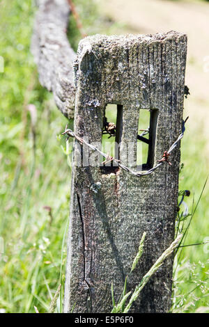 Old wooden fencing post and rail with rusty barbed wire around post in a Surrey field England United Kingdom - Stock Photo