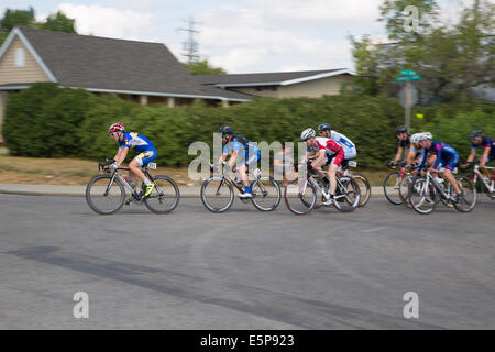 Alberta, Canada. 4th Aug, 2014.Racers ride around a corner on a lap of the Criterium in the community of Bowness - Stock Photo
