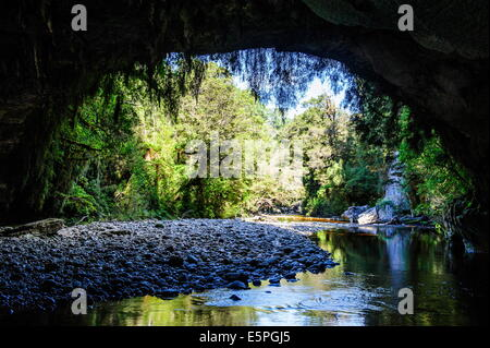 Moria Gate Arch in the Oparara Basin, Karamea, West Coast, South Island, New Zealand, Pacific - Stock Photo