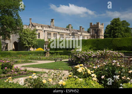 Roses in the Queen's Garden, Sudeley Castle, Winchcombe, Cotswolds, Gloucestershire, England, United Kingdom, Europe - Stock Photo
