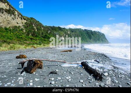 Greyrocky beach in Okarito along the road between Fox Glacier and Greymouth, South Island, New Zealand, Pacific - Stock Photo