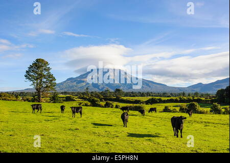 Mount Taranaki, North Island, New Zealand, Pacific - Stock Photo