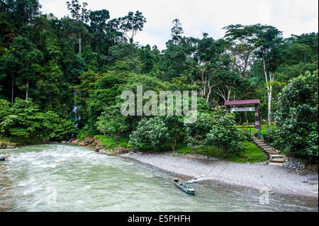 Bohorok River in front of the Bukit Lawang Orang Utan Rehabilitation station, Sumatra, Indonesia, Southeast Asia, - Stock Photo