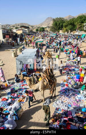 Loaded camel walking through  the colourful Monday market of Keren, Eritrea, Africa - Stock Photo