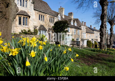 Cotswold cottages along The Hill with spring daffodils, Burford, Cotswolds, Oxfordshire, England, United Kingdom, Europe
