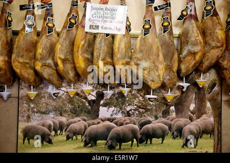 Spanish hams from Pata negra pigs. - Stock Photo