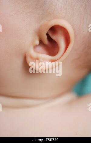 5 month old baby's ear. - Stock Photo