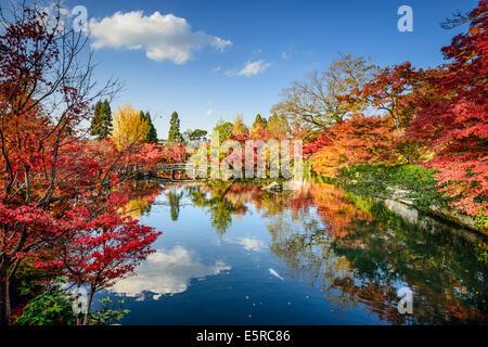 Kyoto, Japan fall foliage at Eikando Shrine Garden. - Stock Photo
