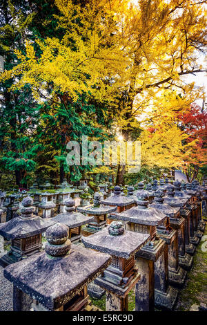 Nara, Japan at Kasuga-Taisha Shrine with fall foliage. - Stock Photo