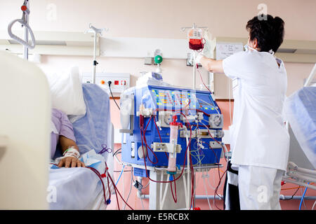 Blood transfusion of anemic patient during a hemodialysis session, Nurse according to the protocol control Transfusion, - Stock Photo