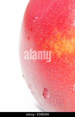 nectarine fruit drop - Stock Photo