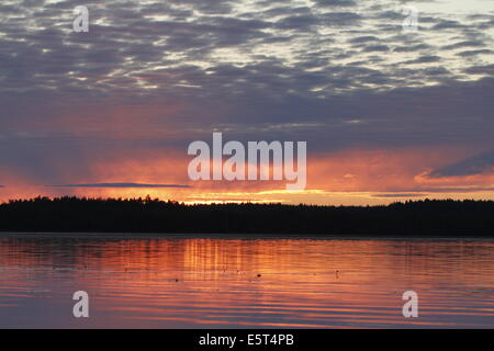 Summer sunrise reflecting on the surface of the lake in Kurjenrahka national park in Finland. - Stock Photo