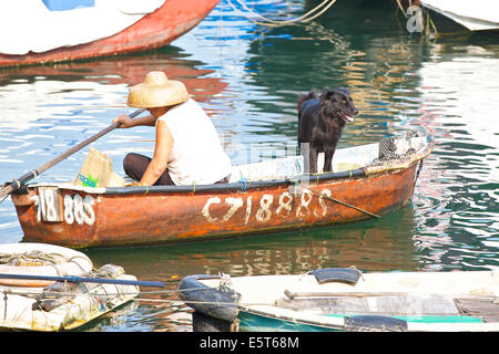 Chinese Woman And Her Dog Paddling Across The Causeway Bay Typhoon Shelter, Hong Kong. - Stock Photo