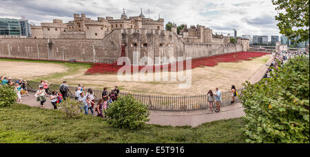 London, UK, 5 August 2014.  In the dry moat of the Tower of London, the evolving art installation called 'Blood - Stock Photo