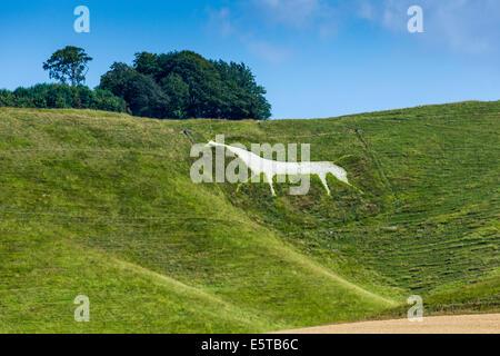 The Cherhill White Horse near Calne Wiltshire England UK. JMH6252 - Stock Photo