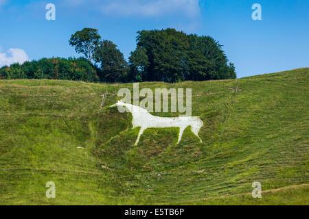 The Cherhill White Horse near Calne Wiltshire England UK. JMH6253 - Stock Photo