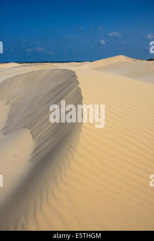 Sand dunes on the south coast of the island of Socotra, UNESCO World Heritatge Site, Yemen, Middle East - Stock Photo