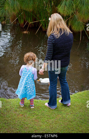 A young curly haired girl and mother feeding ducks - Stock Photo