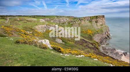 UK, Wales, Swansea, Gower, Rhossili, Swansea Bay Coast at Fall Bay, panoramic - Stock Photo