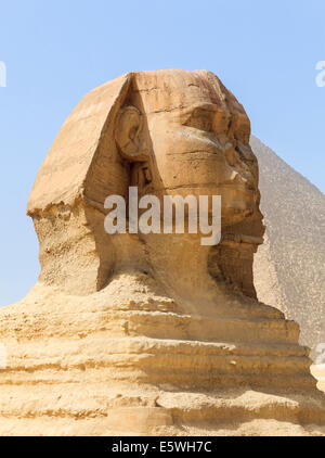 The Sphinx at the Pyramids of Giza in Cairo, Egypt with Great Pyramid in background - Stock Photo