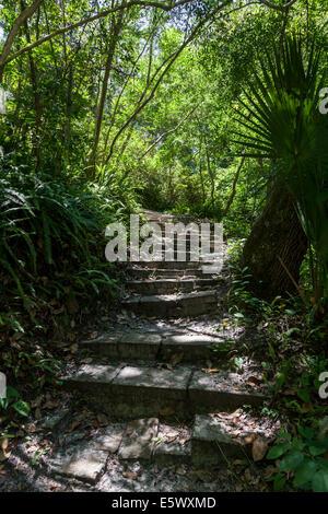 Ravine Gardens State Park in Palatka Florida Stock Photo: 185308317 ...
