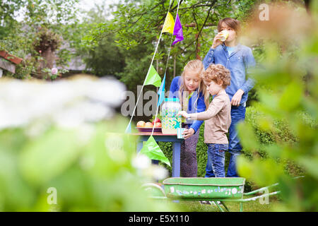 Siblings at their lemonade stand in their garden - Stock Photo