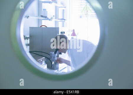 View through door porthole of male scientist using microscope in lab - Stock Photo