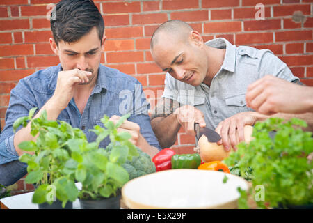 Male friends preparing food with herbs for garden barbecue - Stock Photo
