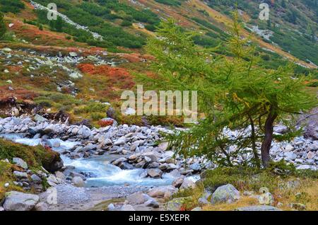 High Alpine Nature Park of the Zillertal Alps, Tirol, Austria. Zillertal Main Ridge autumn in the Zillertal Alps - Stock Photo