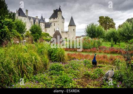 view of park of the castle of Rivau in france - Stock Photo