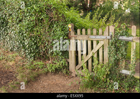 old fashioned wooden lattice oak gate partly secluded marking entrance to forgotten footpath in countryside - Stock Photo