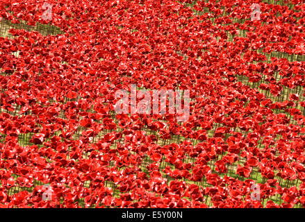 Bloodswept Lands and Seas of Red, thousands of ceramic poppies by artist Paul Cummins at the Tower of London WW1 - Stock Photo