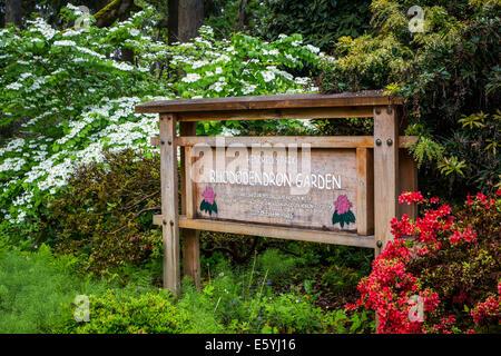 Hendricks Park and Gardens in Eugene, Oregon, USA. - Stock Photo