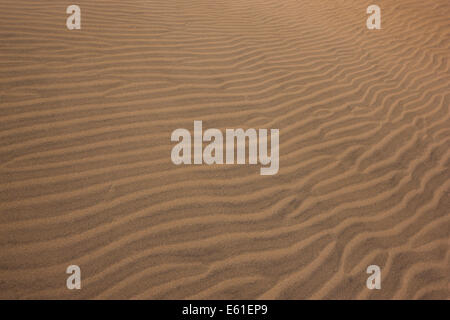 A sand dune with long undisturbed ripples stretching across diagonally - Stock Photo