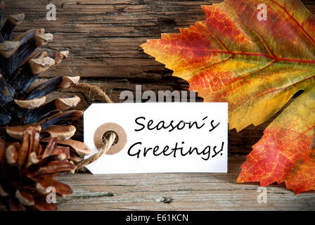 Happy autumn seasons greetings card background design size 5x7 a white label on a fall background with the words seasons greetings on it stock m4hsunfo Image collections