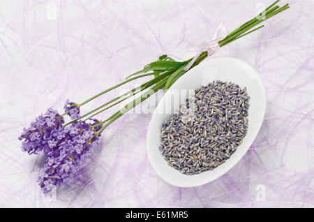 Lavender Flowers Fresh And Dry - Dried lavender flowers in a white porcelain bowl and fresh flowers on purple fiber - Stock Photo