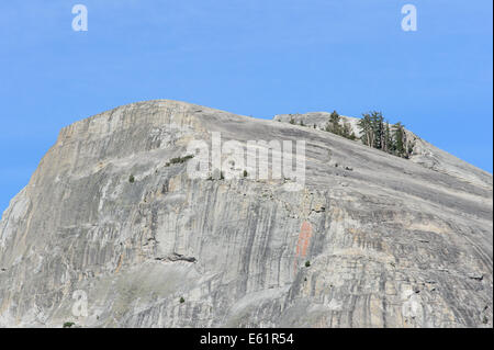 Lembert Dome from Tuolomne Meadows, Yosemite NP - Stock Photo