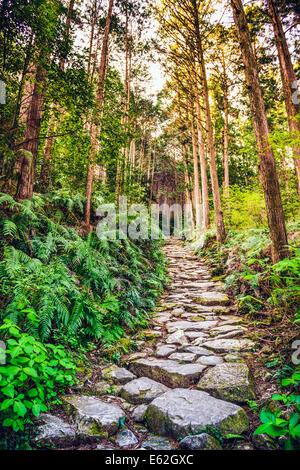 Kumano, Japan at Matsumoto Pass. The pass is part of the Kumano Kodo, a series of ancient pilgrimage routes. - Stock Photo