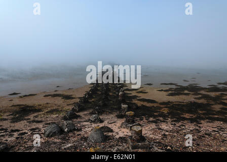 The remains of World War 2 Sea Defenses at St Peters Pool, Deerness, East mainland, Orkney Scotland - Stock Photo
