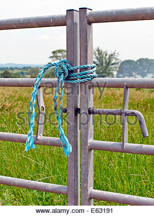two closed metal galvanised farm gates tied up with blue nylon rope on farmland - Stock Photo