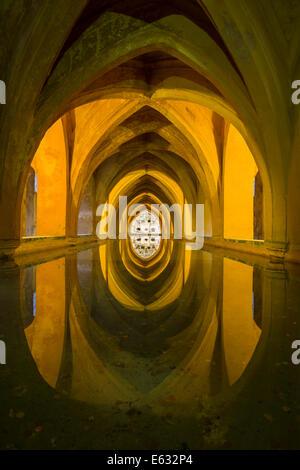 Historical rainwater tanks, Los Baños de Doña María de Padilla, Alcázar Palace, Seville, Andalusia, Spain - Stock Photo